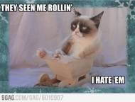 Grumpy cat - bacause hidding real emotions is too mainstream